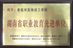 湖南省職業教育先進單位